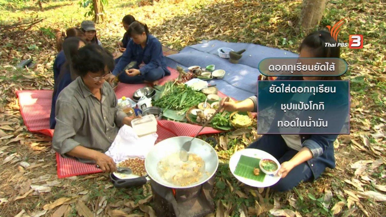 ข่าวค่ำ มิติใหม่ทั่วไทย - ตะลุยทั่วไทย : ดอกทุเรียน