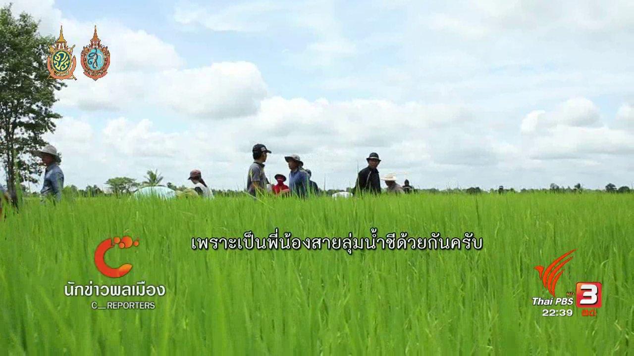 """ที่นี่ Thai PBS - นักข่าวพลเมือง : กิจกรรม """"ดำนา ลงแขก"""" เครือข่ายลุ่มน้ำชีตอนล่าง  จ.ร้อยเอ็ด"""