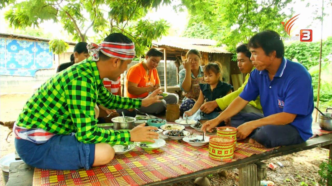 ข่าวค่ำ มิติใหม่ทั่วไทย - ตะลุยทั่วไทย : หอยเล็บม้า