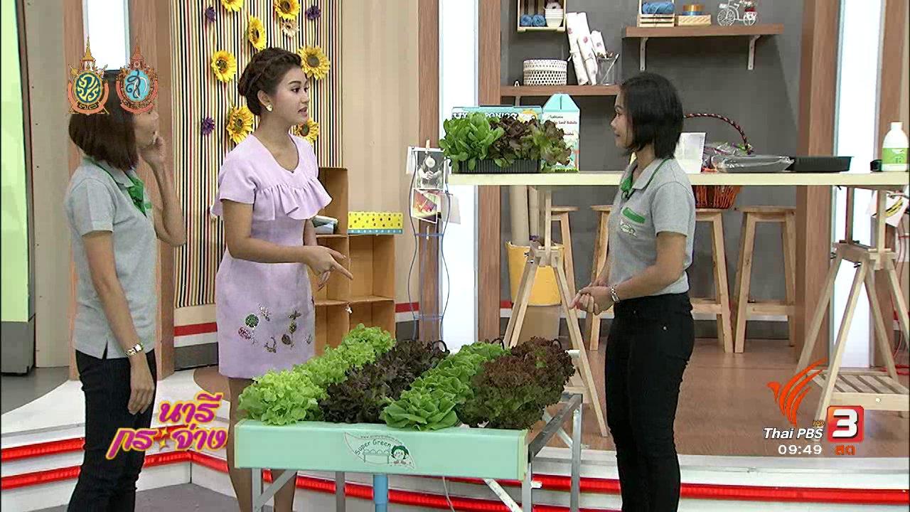 นารีกระจ่าง - ปลูกผักไร้ดิน สุขภาพดีมีอาชีพ