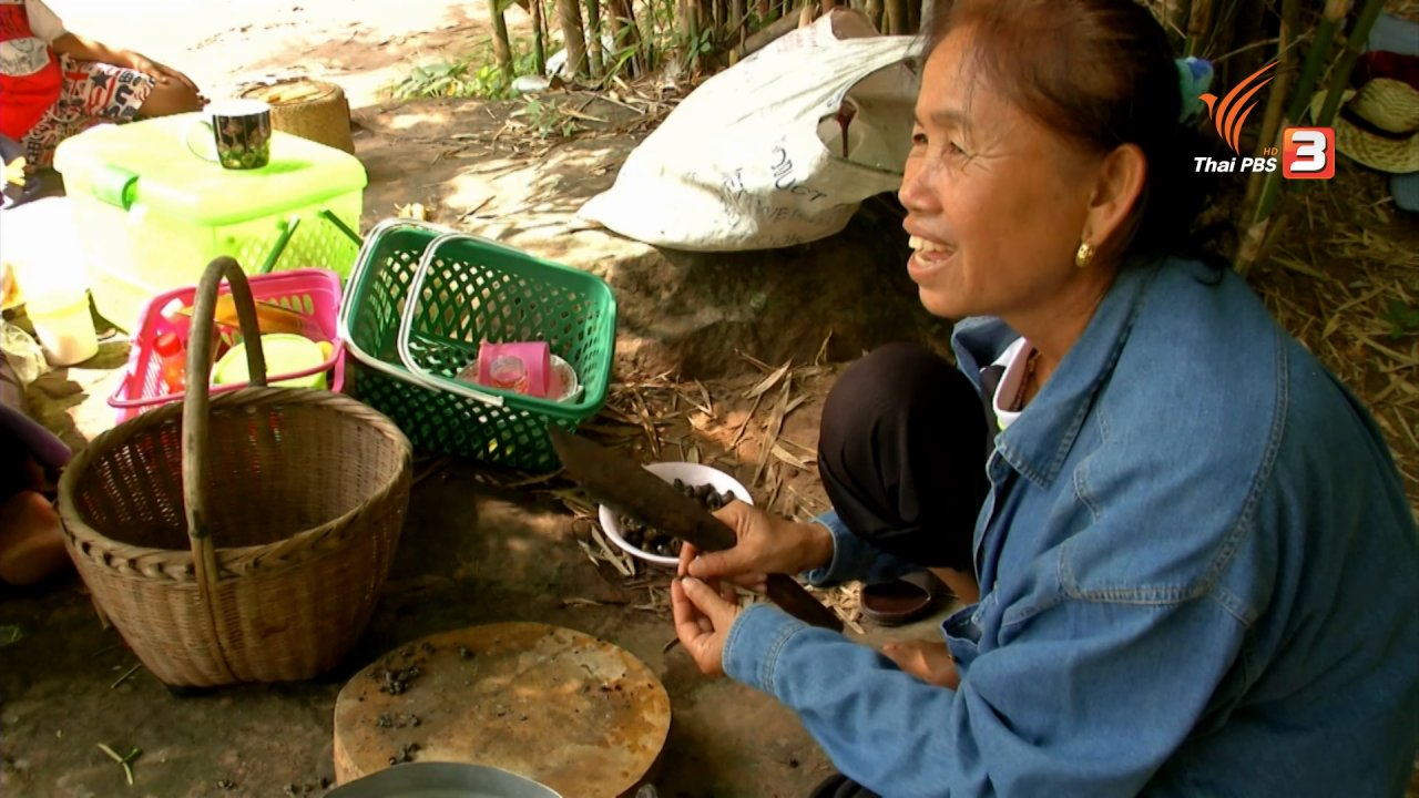 ข่าวค่ำ มิติใหม่ทั่วไทย - หอยหอม