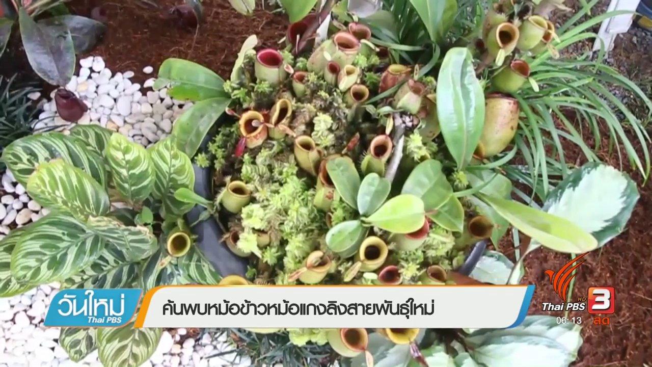 วันใหม่  ไทยพีบีเอส - ค้นพบหม้อข้าวหม้อแกงลิงสายพันธุ์ใหม่