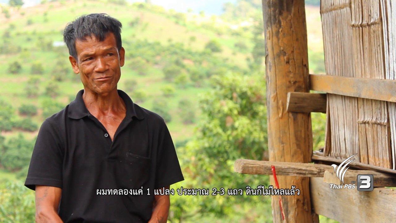 The North องศาเหนือ - ครอบครัวพอเพียงแห่งบ้านบาเลาะ และ รักษ์เมล็ดพันธุ์เพื่อชีวิต