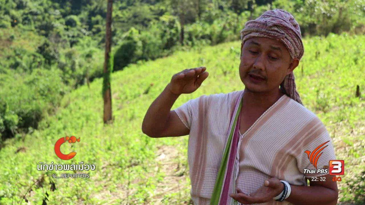 ที่นี่ Thai PBS - นักข่าวพลเมือง : เขตวัฒนธรรมพิเศษเพื่อคนสามารถอยู่ร่วมกับป่าอย่างยั่งยืน
