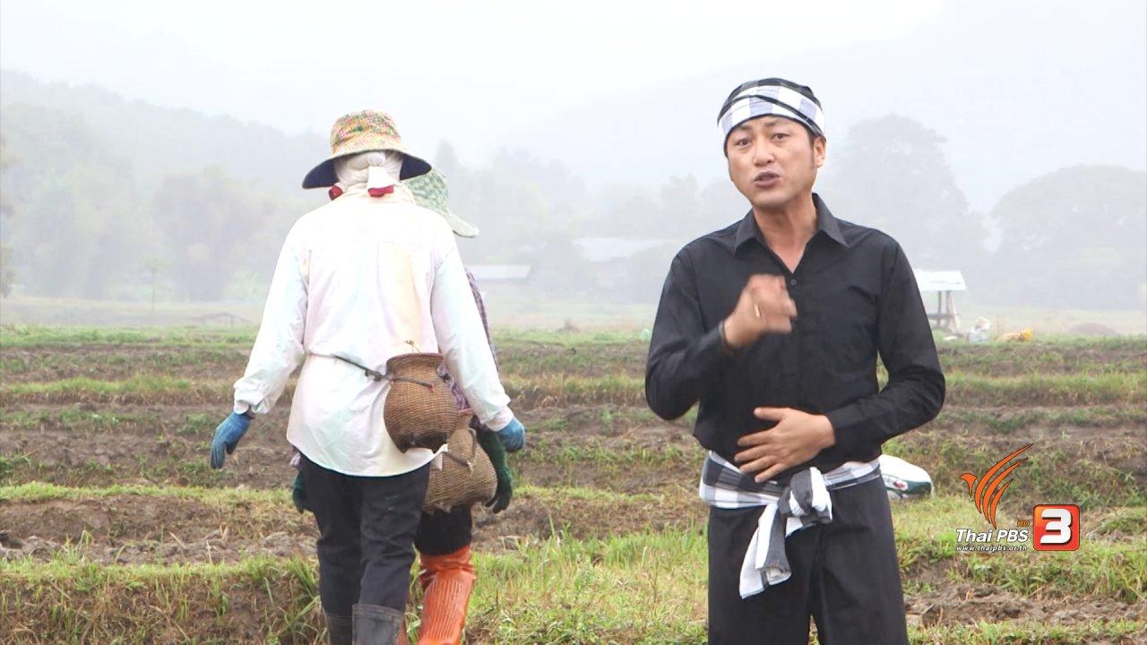 ข่าวค่ำ มิติใหม่ทั่วไทย - ตะลุยทั่วไทย : แกงเจียวปู