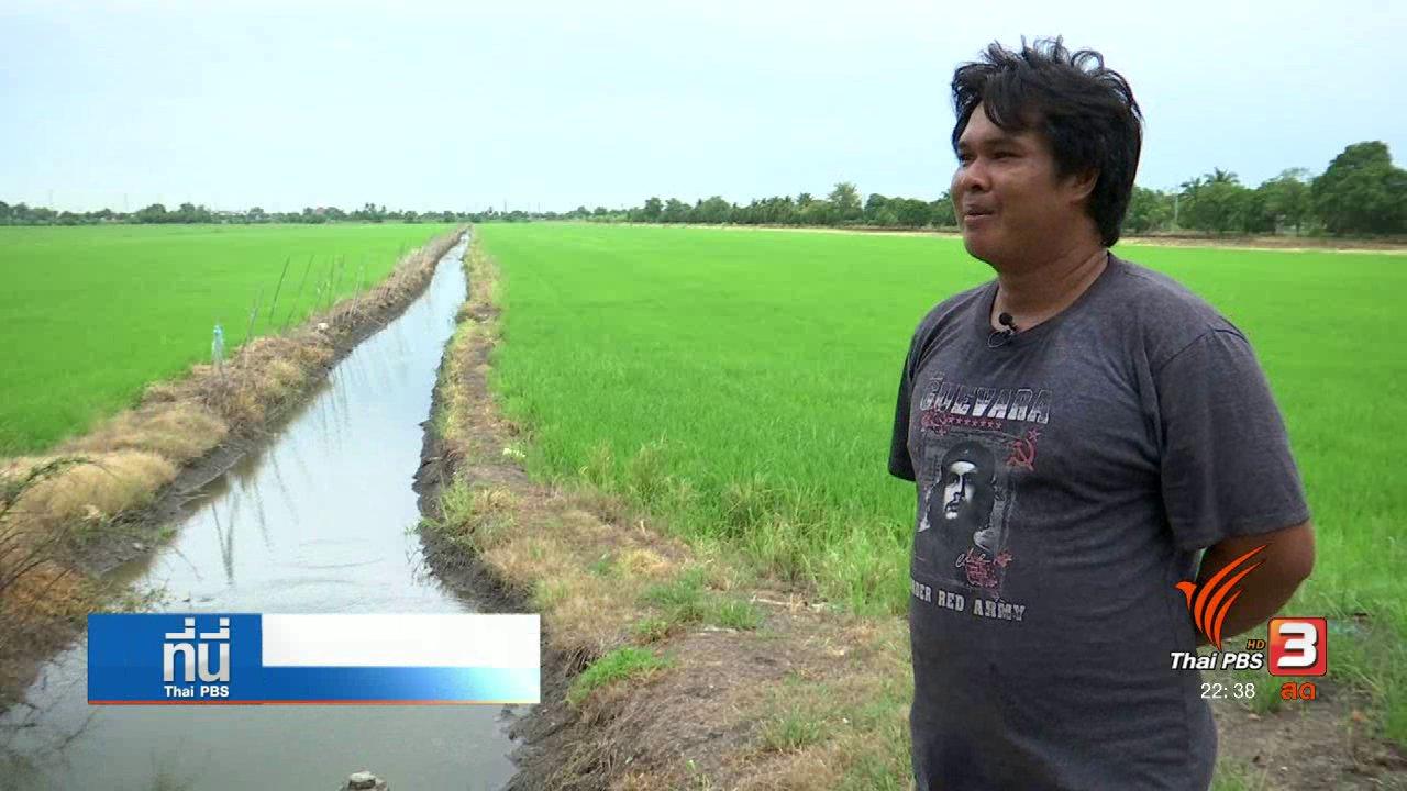 """ที่นี่ Thai PBS - """"ไทยแพน"""" ตอบโต้ """"บรรษัทสารเคมี"""" บิดเบือนข้อเท็จจริง"""