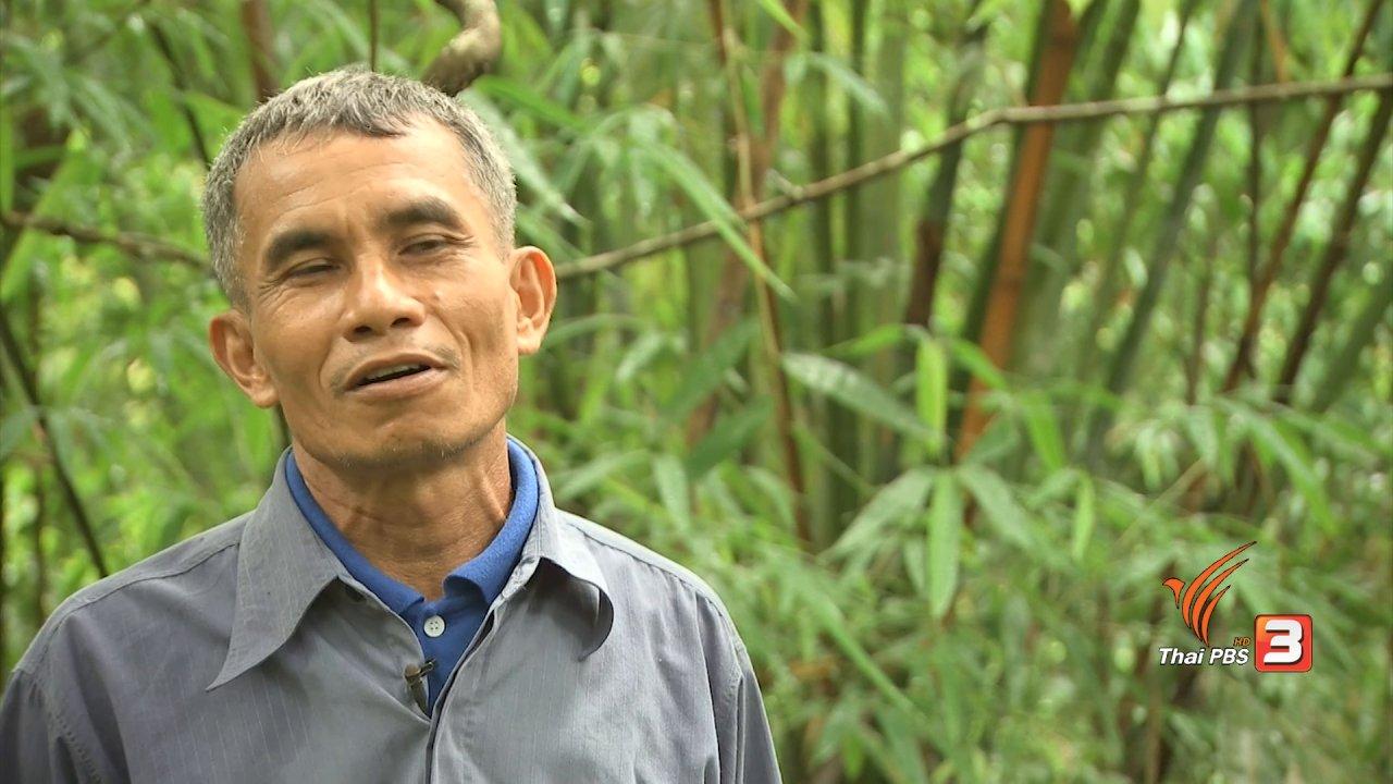 จับตาสถานการณ์ - ตะลุยทั่วไทย : หลามไก่