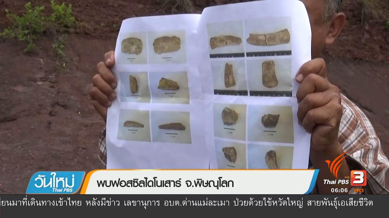 วันใหม่  ไทยพีบีเอส - พบฟอสซิลไดโนเสาร์ จ.พิษณุโลก