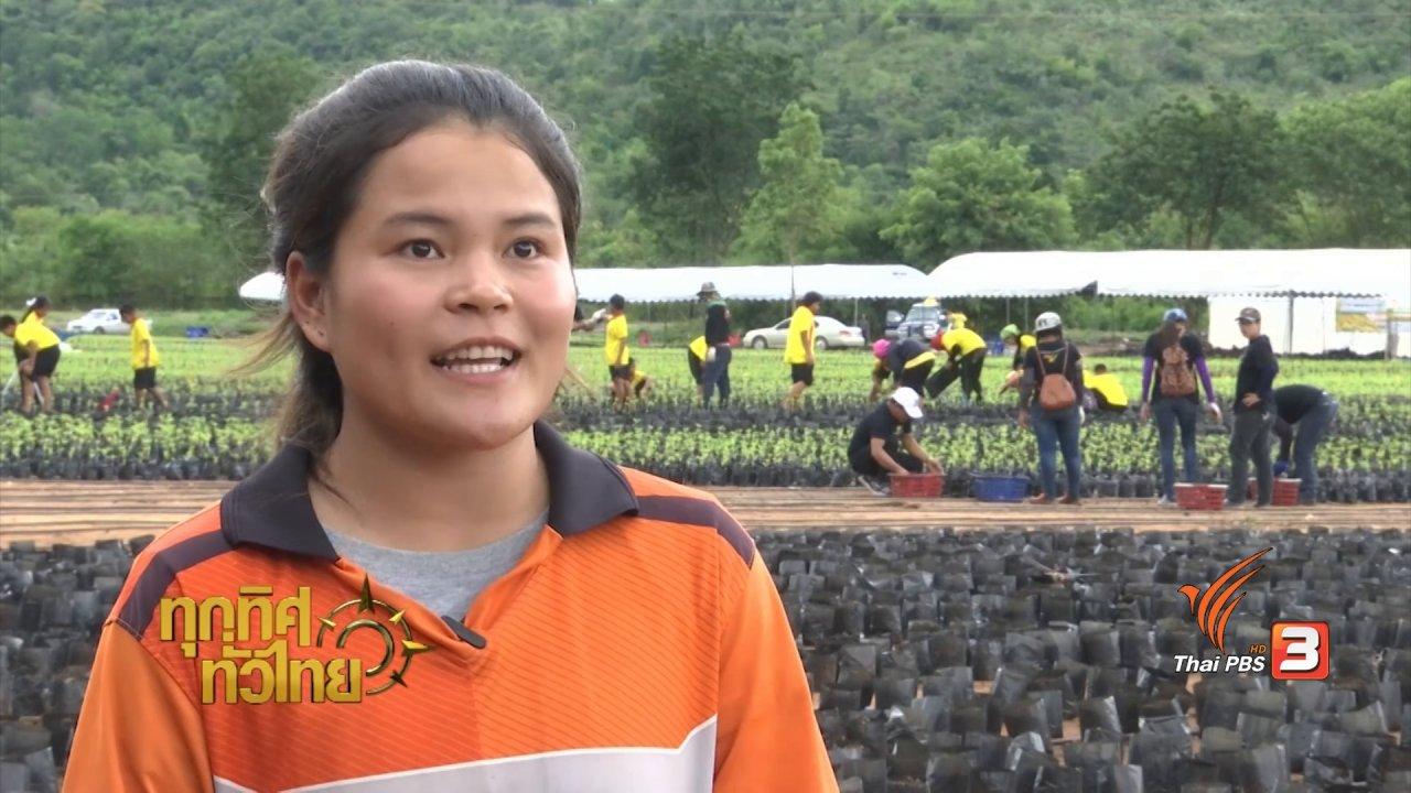 ทุกทิศทั่วไทย - ชุมชนทั่วไทย : ปลูกดอกดาวเรืองเพื่อถวายเป็นราชสักการะ