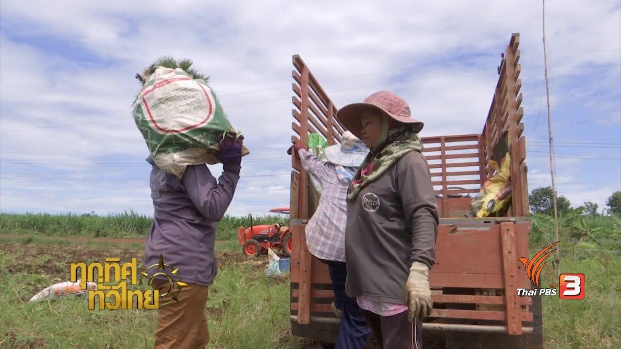 """ทุกทิศทั่วไทย - จุฑามาศ พาตะลุย : เมนูพื้นบ้านจาก """"เผือก"""""""