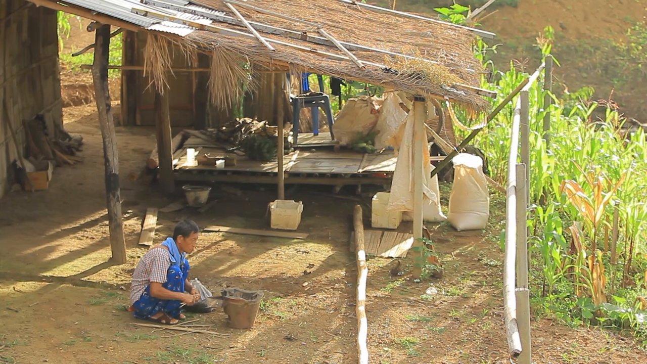 ทั่วถิ่นแดนไทย - หมู่บ้านแห่งวิถีชีวิต บ้านนาเลาใหม่ ลีซูโฮมสเตย์