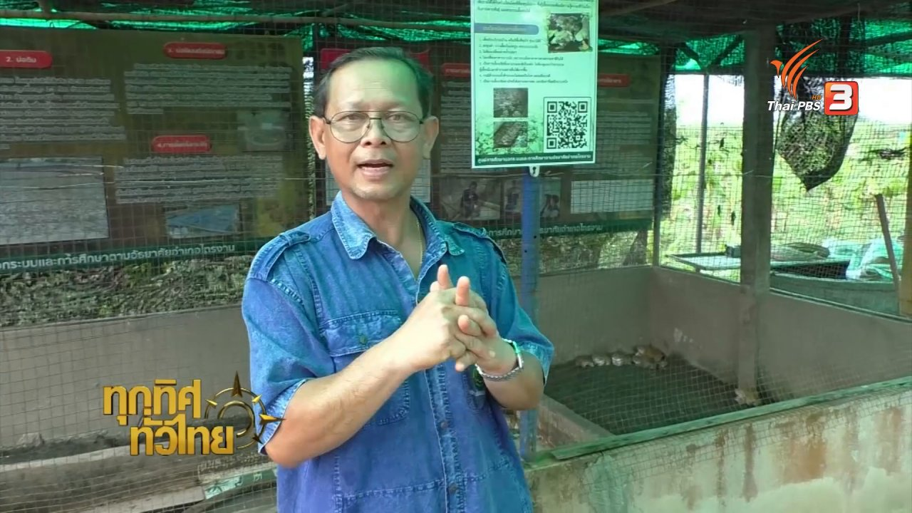 ทุกทิศทั่วไทย - ชุมชนทั่วไทย : ศูนย์เรียนรู้การเพิ่มประสิทธิภาพการผลิตสินค้าเกษตรไทรงาม